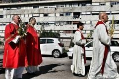 Processione delle Palme 2017