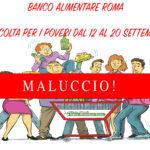 RACCOLTA PER I POVERI: MALUCCIO!